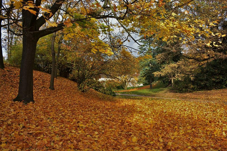 podzim na vysočině